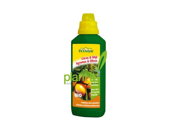 Ecostyle Citrus & Olijf voeding NIEUW