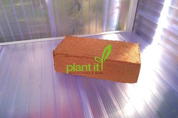 Palm coir brick